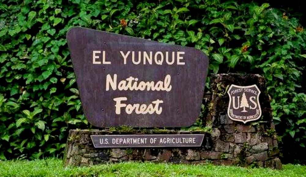 Национальный парк Эль Юнге
