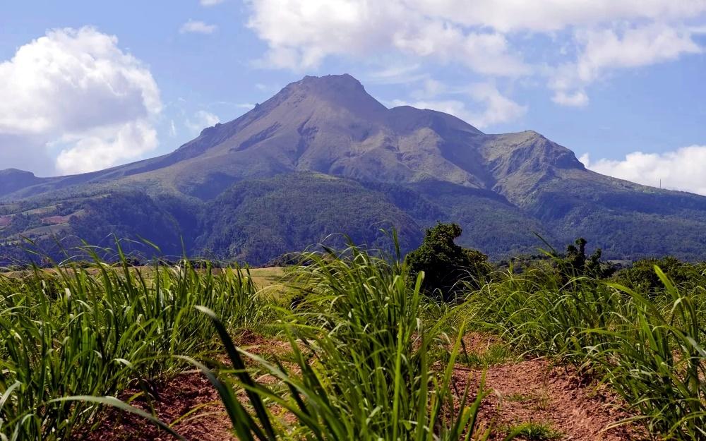 Вулкан Мон-Пеле, Мартиника