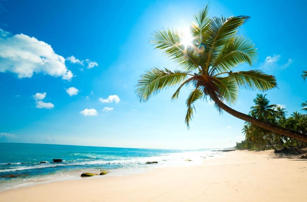 Карибские острова, пляж, пальмы, море