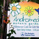 Сад Андромеды на Барбадосе