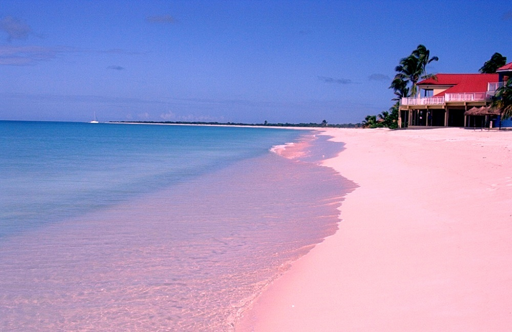 Barbuda Island pink sand