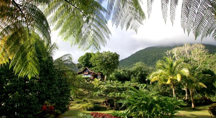 Природа Бас-Тер, парки и леса