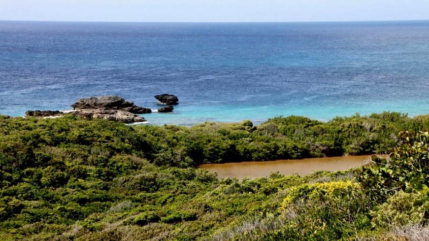 удивительная природа острова Гранд-Тер