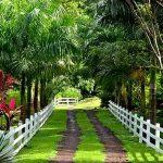 Остров Гренада частный парк
