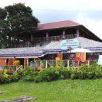 Плантация какао на острове Гренада