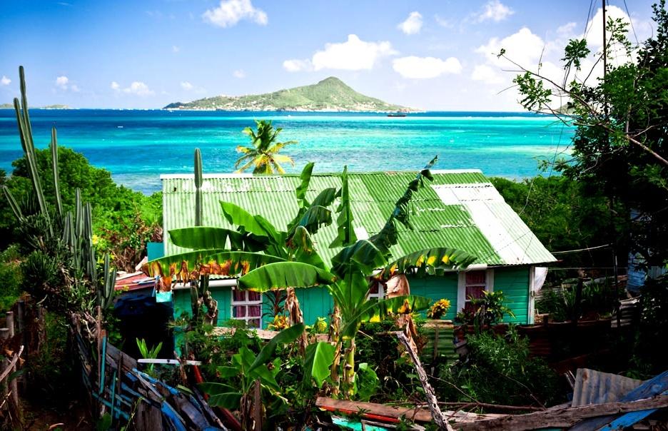 Природа Петит Мартиники