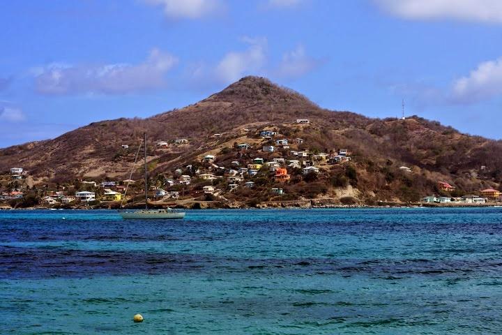 Петит Мартиника
