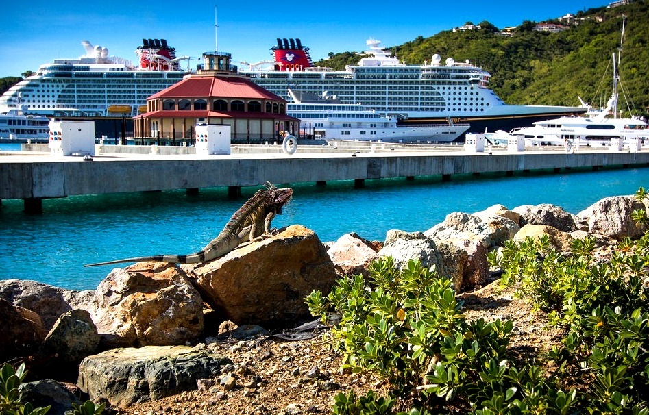 Сент-Томас остров игуан