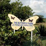 ферма бабочек на Сен-Мартене