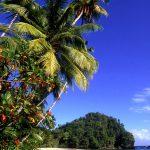 Тринидад сказочный остров